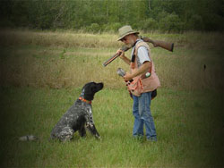 A professional gun dog trainer in the field working with a hunting dog.
